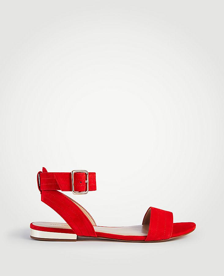 Farrah Suede Flat Sandals by Ann Taylor