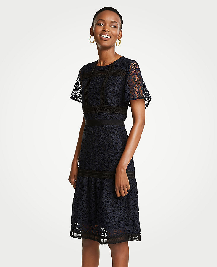 Petite Mixed Lace Flare Dress by Ann Taylor