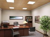 Executive/Closed Office