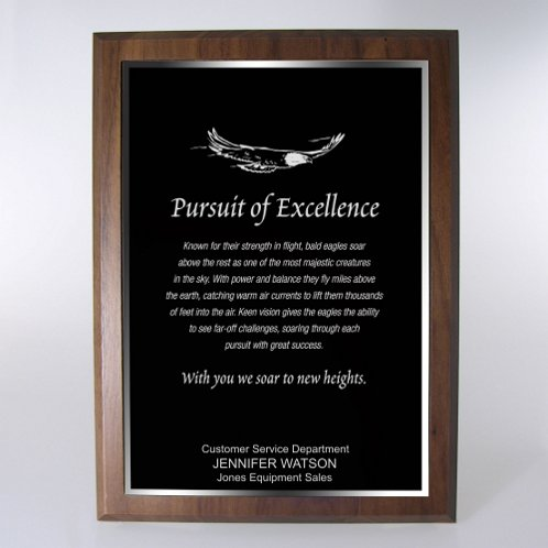 Black with Silver Full-Size Character Award Plaque