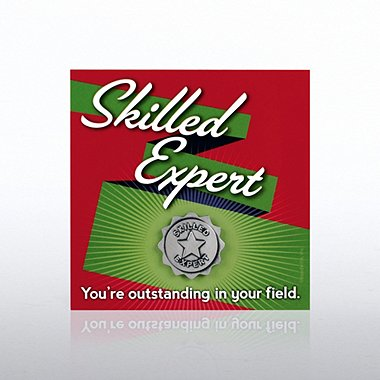 Magnets of Success - Skilled Expert