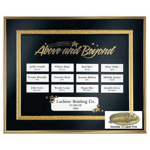 Above & Beyond Perpetual Recognition Program w/12 Pins