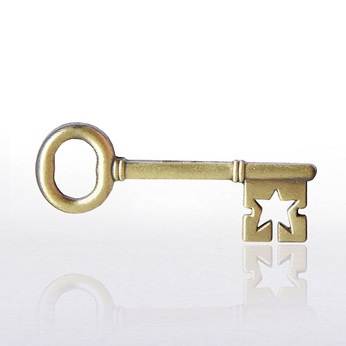 Key To Success Lapel Pin
