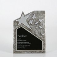 Resin Star Plaque - Silver - Large