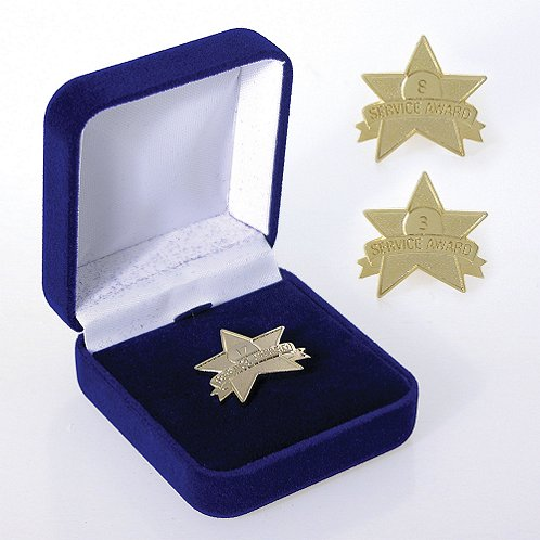 Star Service Award Anniversary Lapel Pin