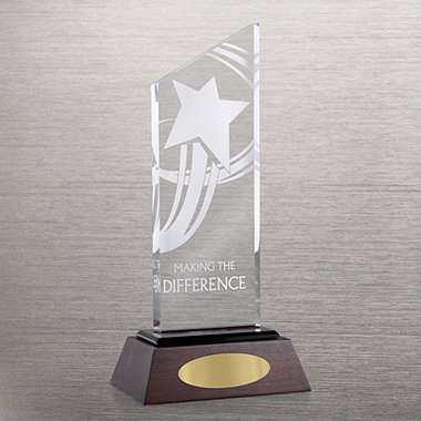 Apex Award Trophy - Making the Difference