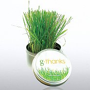 g-thanks - Grass Kit