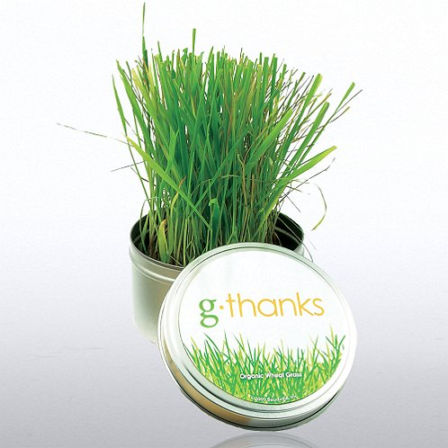 g-thanks Grass Kit