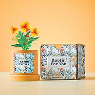 Retro Mason Jar Mug - You Put the Zing in Amazing