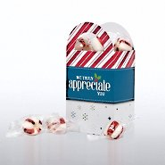 Fun Treat Gift Bag - Candy Cane: We Truly Appreciate You