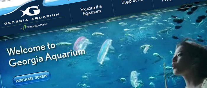 Learn about the Georgia Aquarium