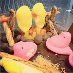 Peeps over a Fire Pit