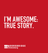 I'm Awesome: True Story