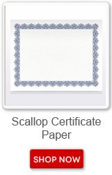 Scallop Certificate Paper. Shop now button