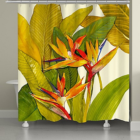 Laural Home Tropical Bird Of Paradise Shower Curtain Bed Bath Beyond