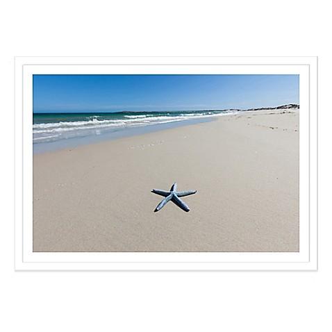 blue starfish on a beach south australia extra large. Black Bedroom Furniture Sets. Home Design Ideas