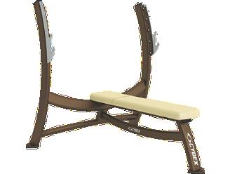 Olympic Bench Press