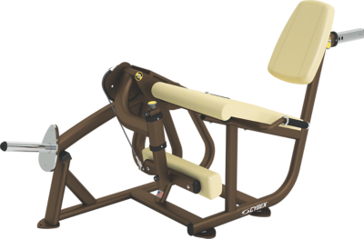 leg extension weight machine