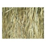 Picture of Cabela's Northern Flight™ Marshgrass 5x4 Bundle