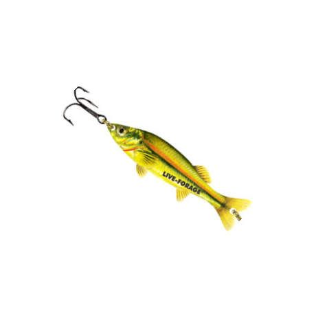 Northland moxie minnow spoon lure cabela 39 s canada for Cabela s fishing lures