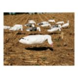 Picture of SilloSocks Windsock Snow Goose Feeder Decoys