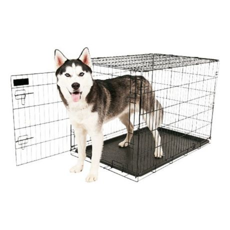 Aspen Pet Wire Dog Kennel