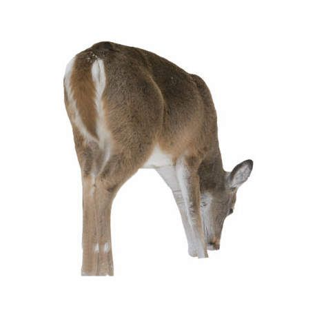 Montana Decoy Silhouette Whitetail Playmate Feeding Doe Decoy