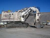 CATERPILLAR GROSSES BERGBAUPRODUKT 6060FS equipment  photo 3
