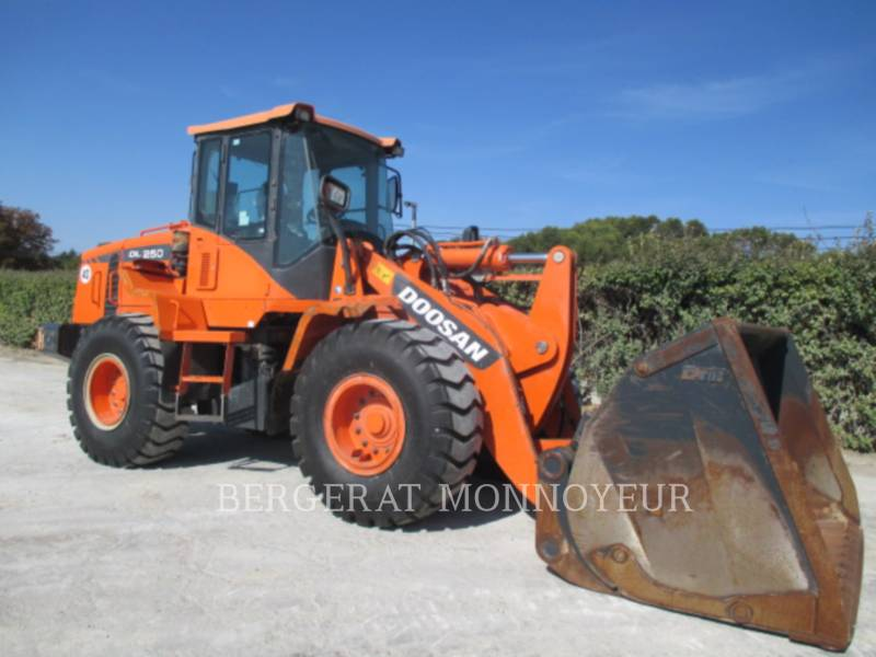 DOOSAN INFRACORE AMERICA CORP. CARGADORES DE RUEDAS DL250.3 equipment  photo 2