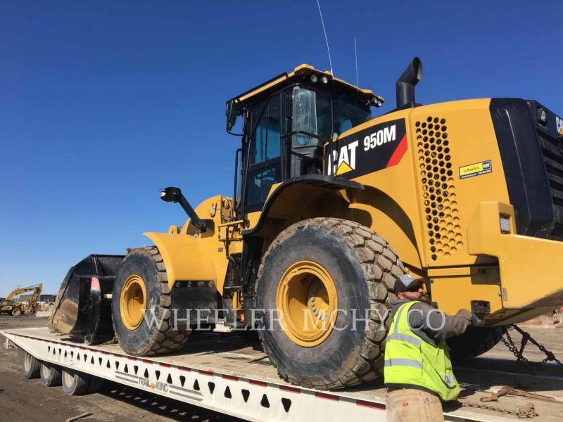CATERPILLAR PALE GOMMATE/PALE GOMMATE MULTIUSO 950M QCF equipment  photo 6