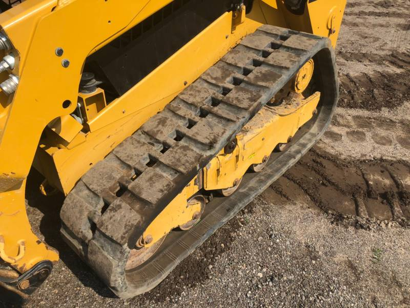 CATERPILLAR MULTI TERRAIN LOADERS 259 D equipment  photo 16