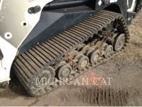 TEREX CORPORATION CARGADORES MULTITERRENO PT110 equipment  photo 15