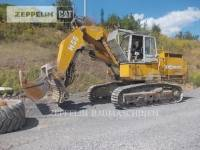 Equipment photo DEMAG H55 PELLES SUR CHAINES 1