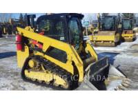 Equipment photo CATERPILLAR 249D CARGADORES MULTITERRENO 1