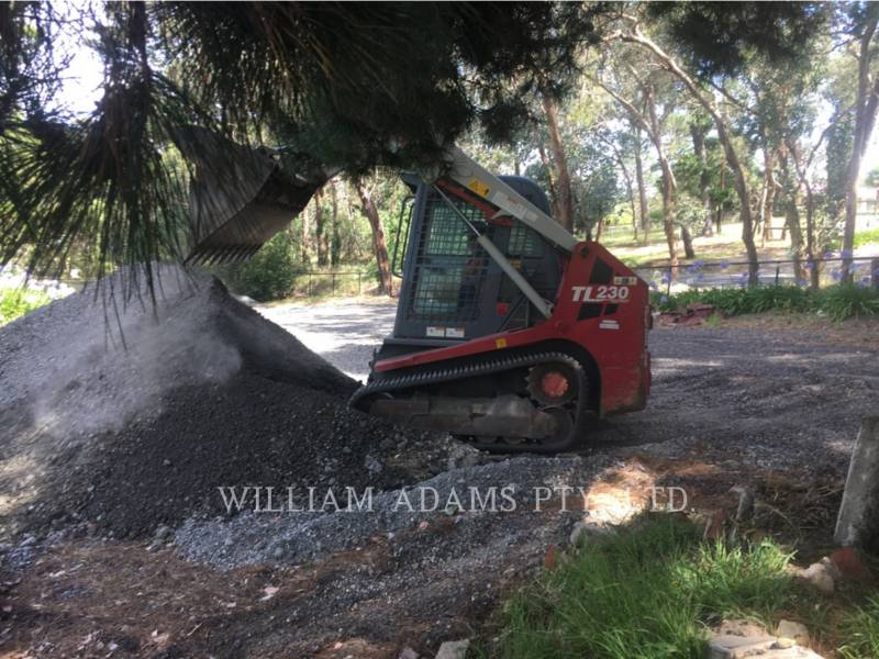 TAKEUCHI MFG. CO. LTD. MULTI TERRAIN LOADERS TL230 equipment  photo 6