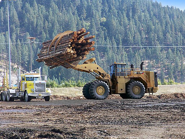 Wiellader 988K - uitvoering voor de houtzagerij