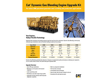 Cat Dynamic Gas Blending Engine Upgrade Kit