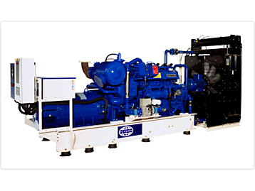 FG Wilson example gas generator set