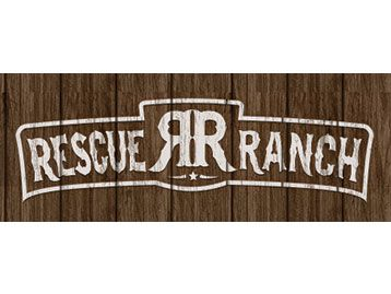 Cat Racing Official Website supports Rescue Ranch