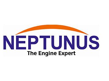 Neptunus Power Plant Service
