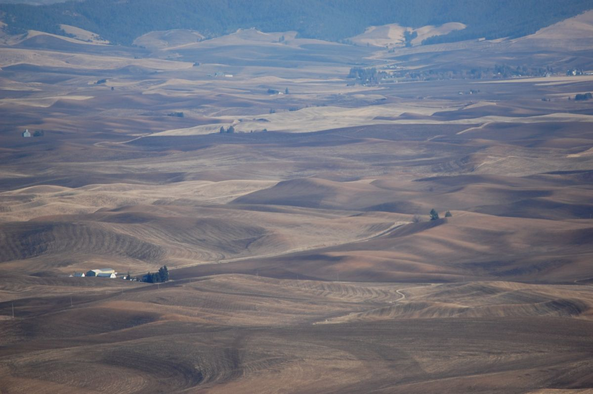 The Palouse of eastern Washington state as seen from Steptoe Butte. The land's pitch, and the grittiness of its windswept but fertile soil, put extra demands on the equipment farmers used for land conversion.