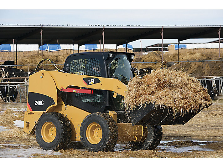246C Skid Steer Loader