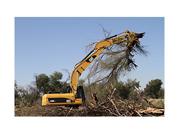 Cat 329D L excavator clearing trees