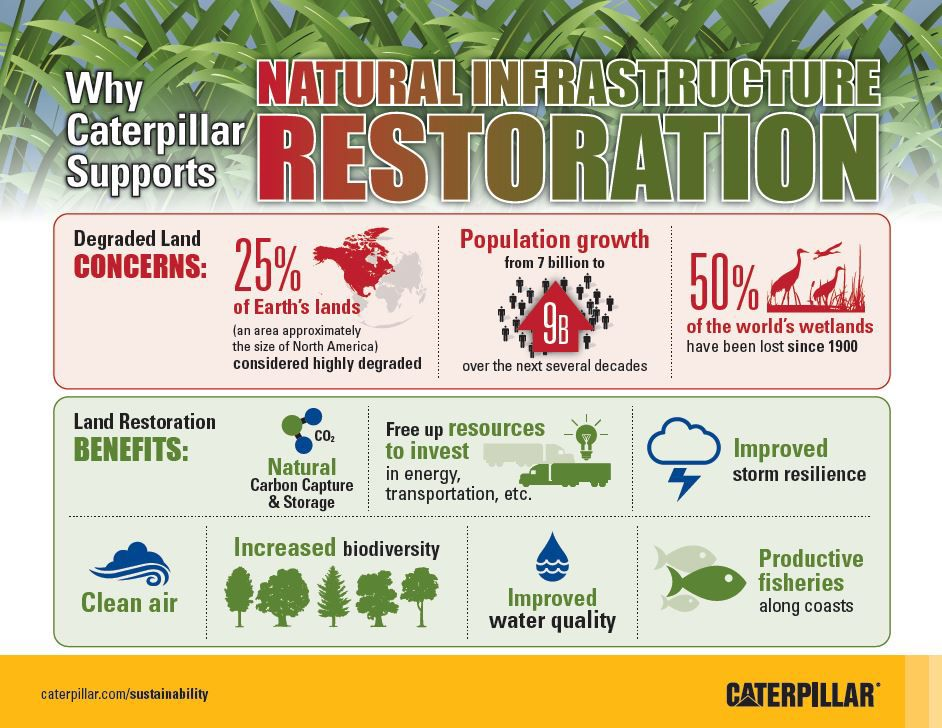 Why Caterpillar Supports Natural Infrastructure Restoration
