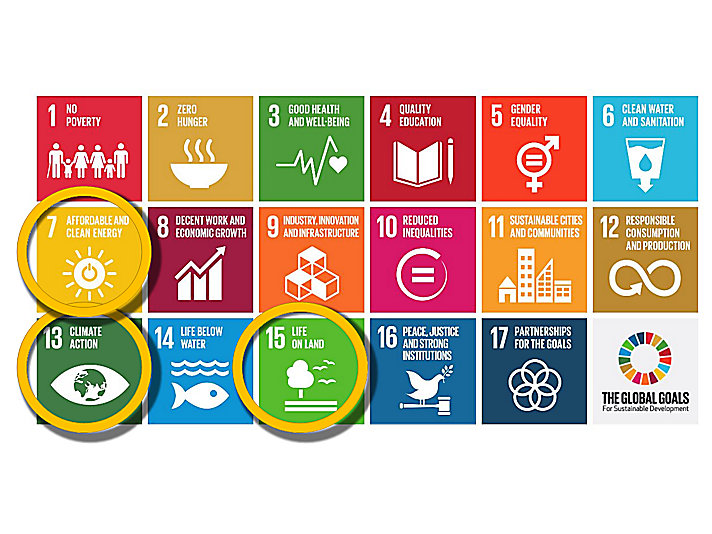 The Global Goals for Sustainable Development. Learn more about these goals at globalgoals.org.