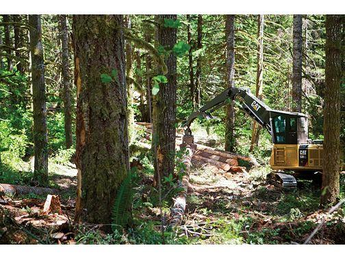 538 - Forest Machines