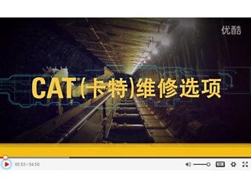 Cat<sup>®</sup>(卡特)维修选项