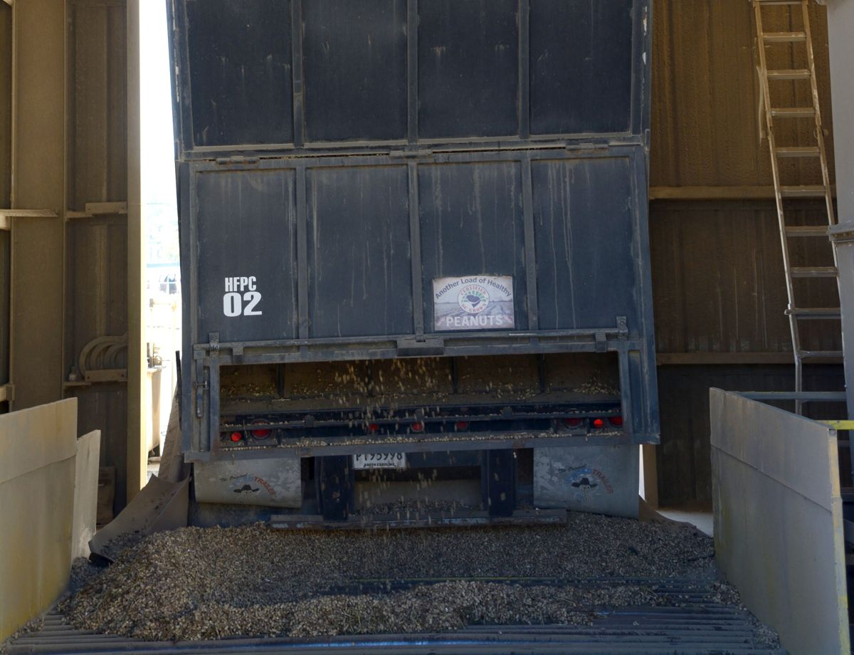 As the owner of a collection point for freshly harvested peanuts that come in from the field, the co-owner of Hemingway Fertilizer & Peanut Co. found himself without power, and 20 semi-trailers full of peanuts that were in danger of rotting.