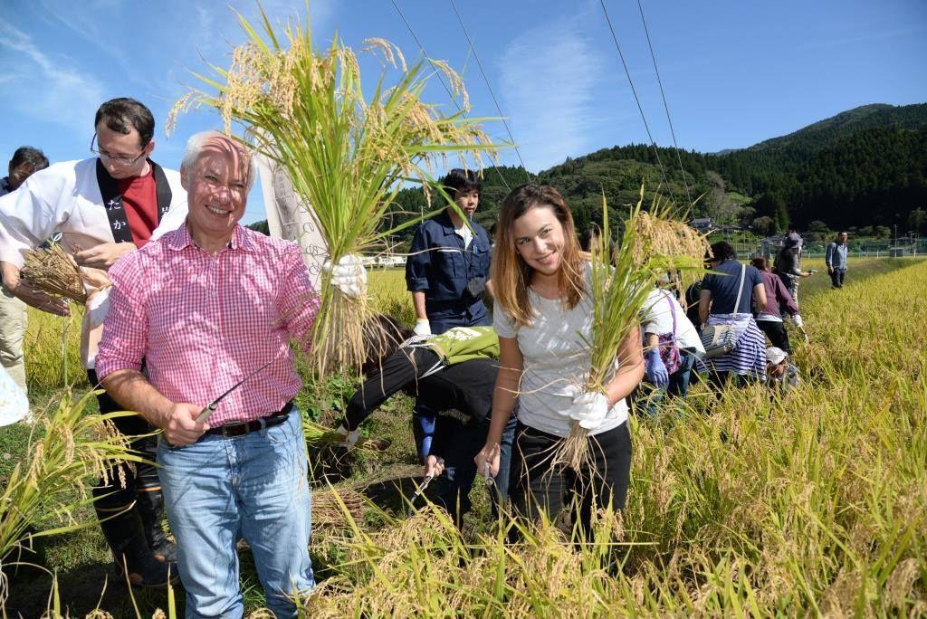 Agritourism as a part of the reclamation of Rikuzentakata, Japan