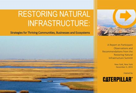 Restoring Natural Infrastructure